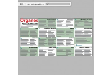 Tableau des Organes Etiopsychologie 2012